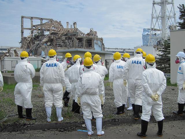 Фото: TEPCO