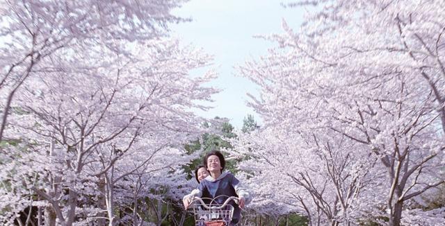 Фото: Fuji Television Network Inc.