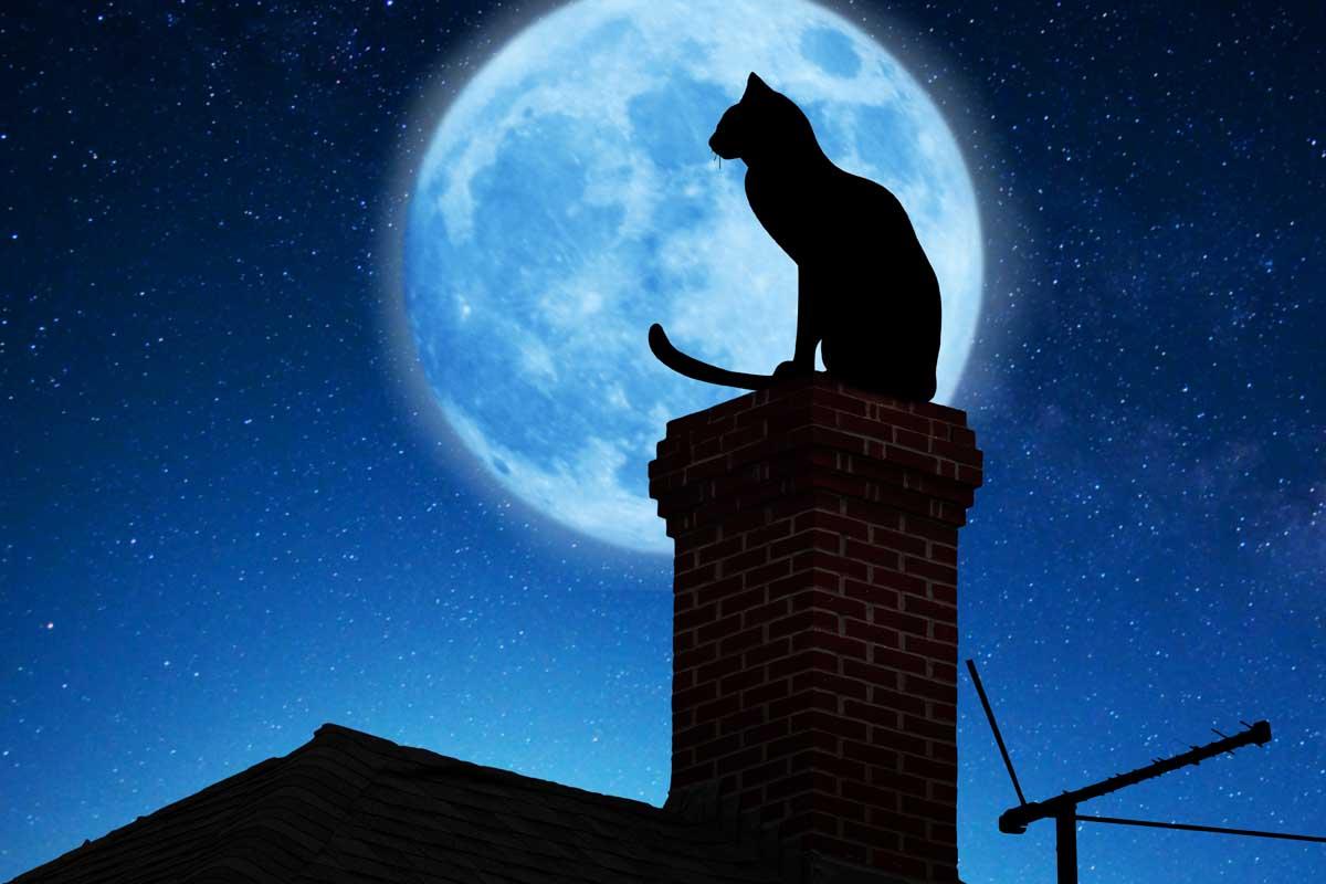 Почему современный человек не может избавиться от власти суеверий