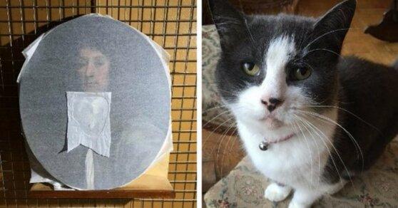 Редкая картина Майкла Райта повреждена прыгучей кошкой