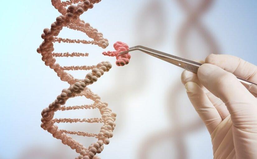 Власти Китая признались в генетических экспериментах над детьми