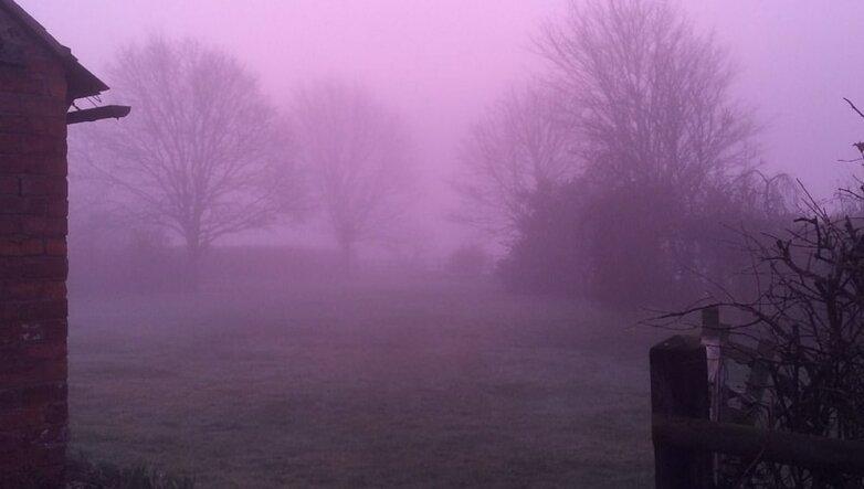 Розовый туман в Великобритании