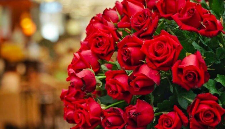 Букет, розы, праздник, 14 февраля