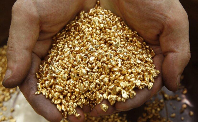 Золотое дно и его обитатели