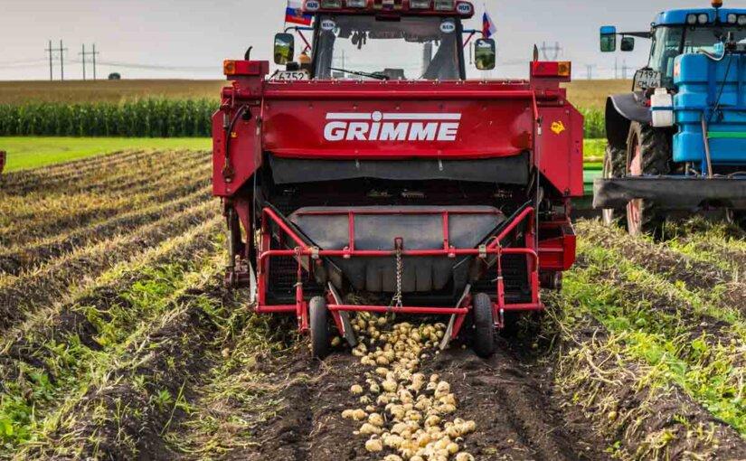 Почему программы продовольственной безопасности не снижают стоимости отечественных продуктов