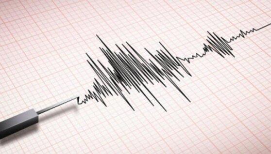 Землетрясение зафиксировано недалеко от Южных Курил