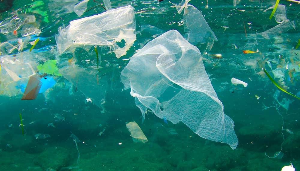 Мусор в море, мусор в океане