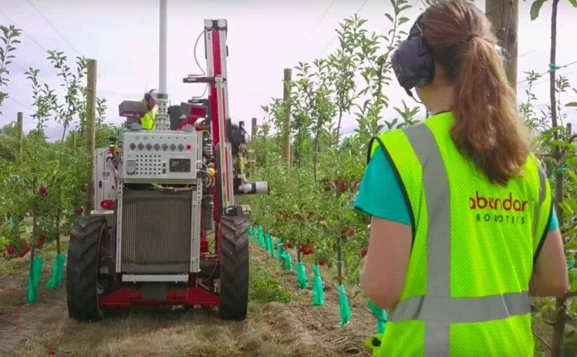 Робот-пылесос приступил к сбору яблок в Новой Зеландии