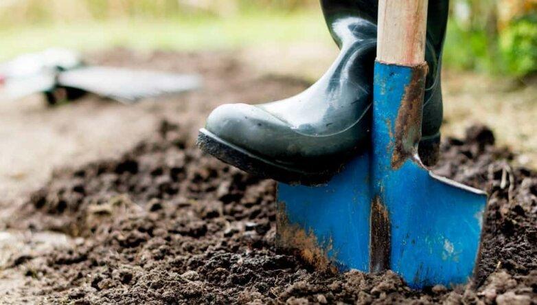 Неформальная (теневая) занятость, низкооплачиваемая работа, лопата