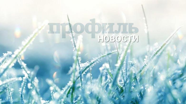 Погода на три дня в Москве и Петербурге: с 21 по 23 ноября