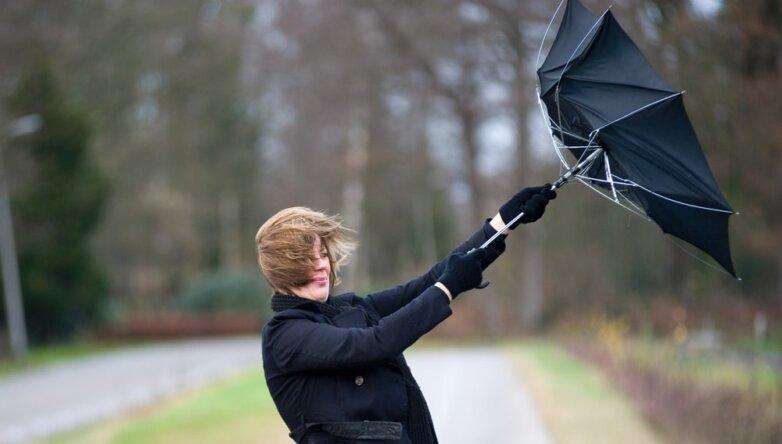 Погода, ветер, зонтик, весна, осень