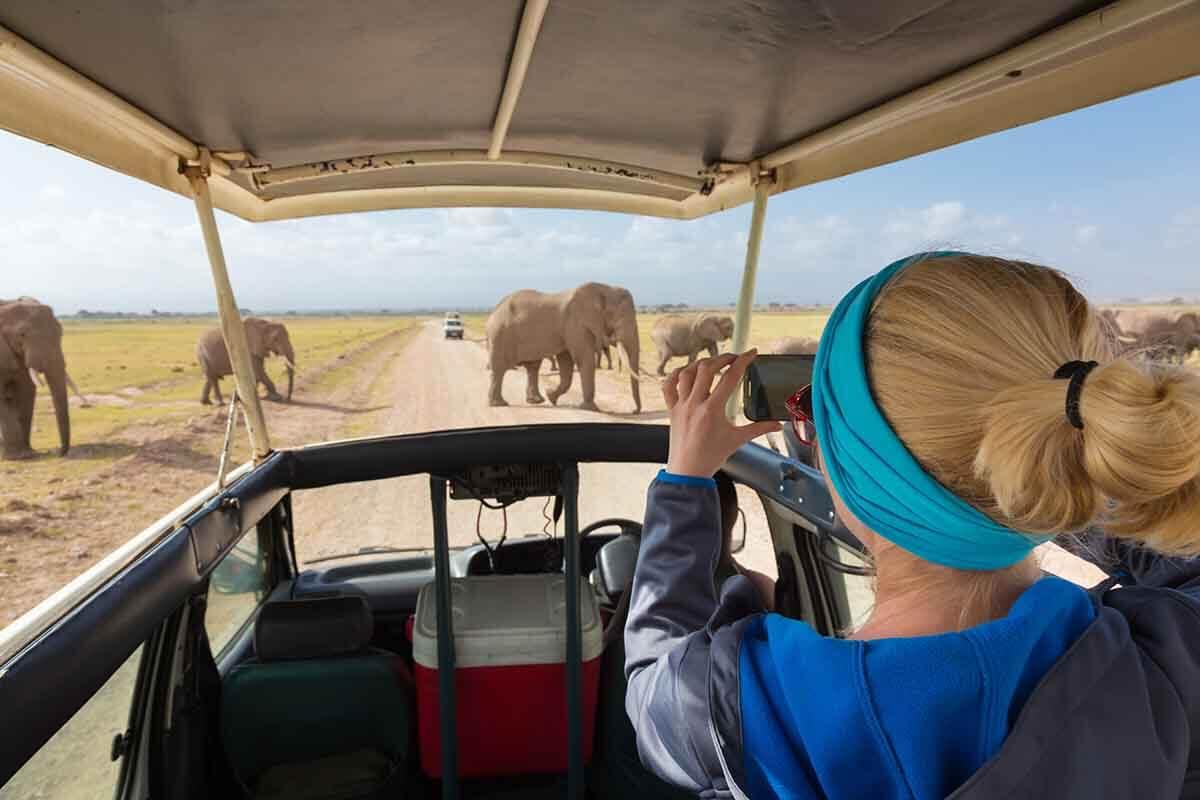 Популярность экотуризма растет пропорционально ухудшению экологии планеты