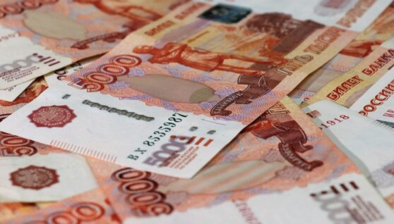 Россиянка лишилась 65 тыс. рублей во время их «дезинфекции»