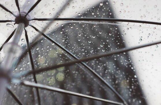 Синоптики пообещали в Москве дождь с грозой