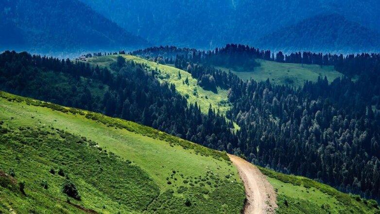 Дальневосточный гектар, природа