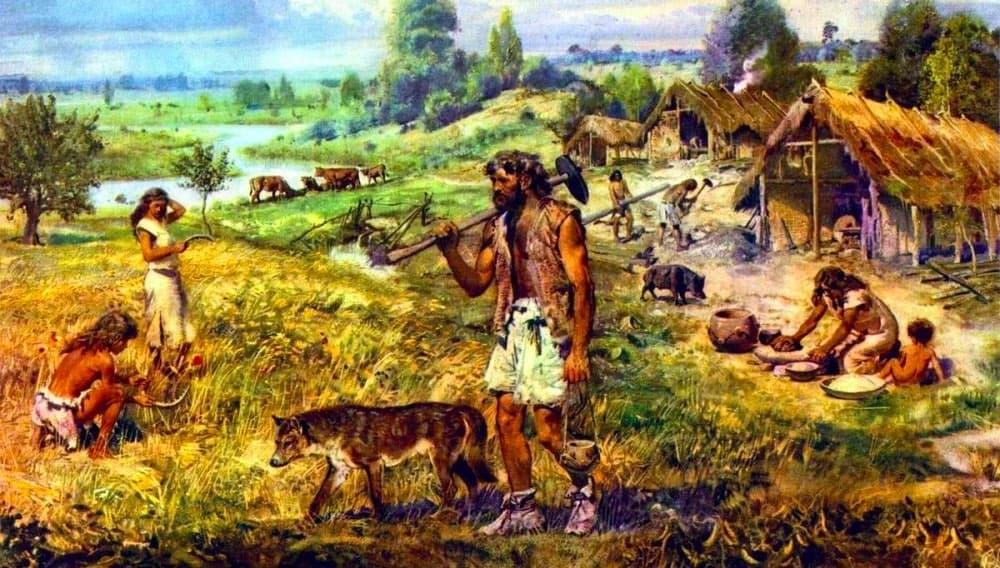 Первобытные люди, неолит