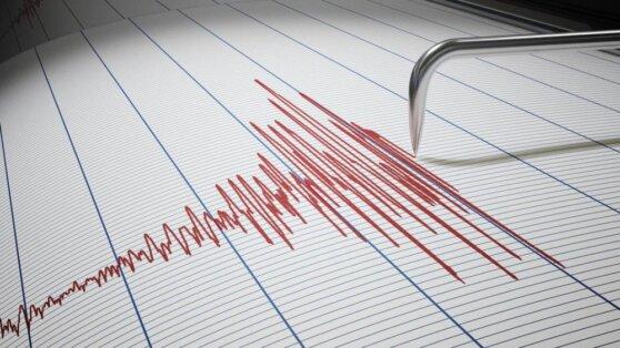 В Турции назвали число погибших в результате землетрясения