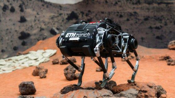 Разработчики представили робопса  для работы в лунной гравитации