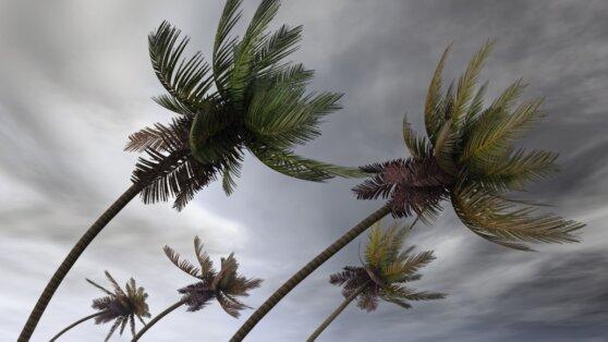 К побережью Вьетнама движется тропический шторм Накри