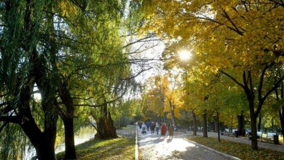 В Москве 25 мая потеплеет до +18°С
