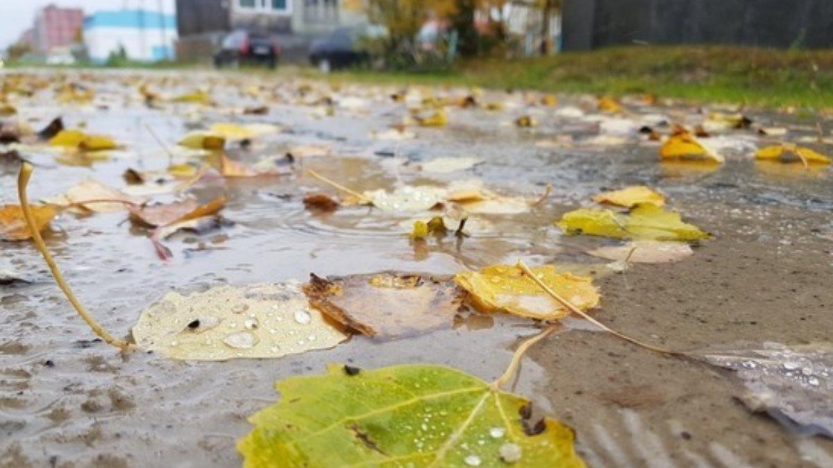 Синоптики рассказали о погоде в Москве и Санкт-Петербурге на ближайшие три дня