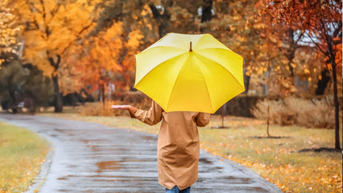 Погода на три дня в Москве и Петербурге: с 24 по 26 октября