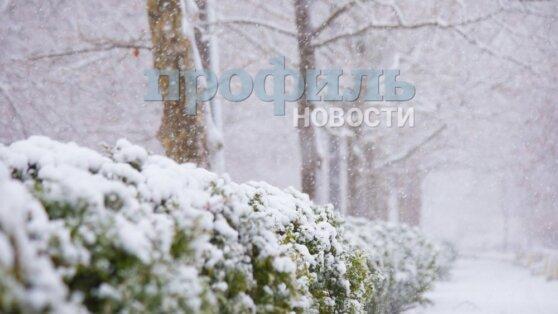 В Гидрометцентре рассказали о надвигающихся на Москву снегопадах