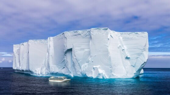 От Антарктиды откололся айсберг весом 315 млрд тонн