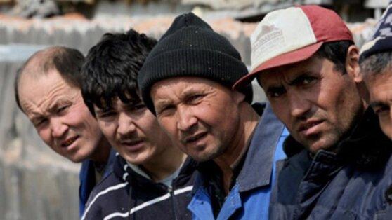 В МВД изучают возможность объявления амнистии для нелегальных мигрантов