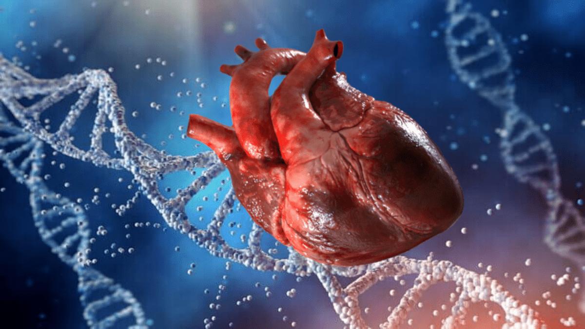 Кардиологи назвали возможные причины внезапной остановки сердца