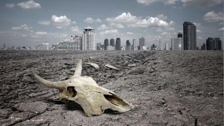 В Оксфорде оценили риск вымирания человечества
