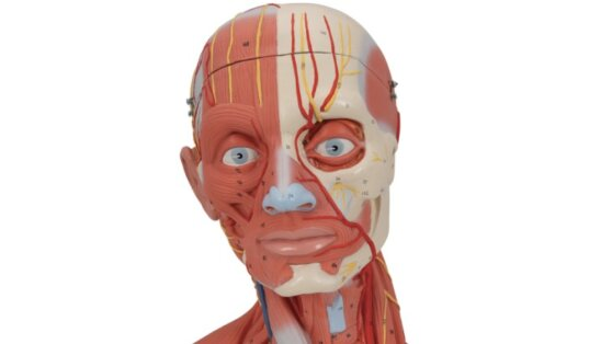 Онкологи перечислили симптомы смертельных заболеваний