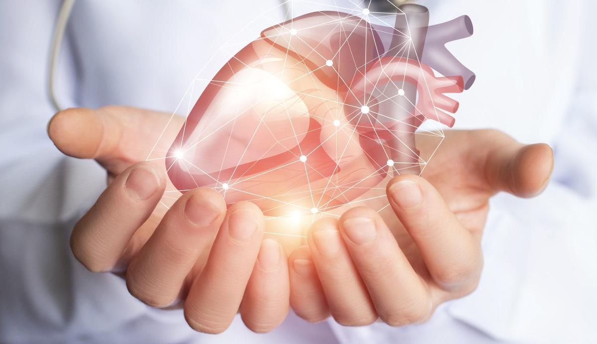 Немецкий кардиолог рассказал о способах защиты сердца от болезней