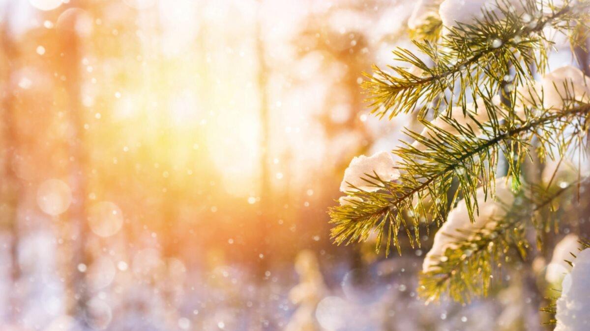 Погода снежная зима солнце один