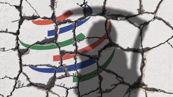 Почему реформа ВТО остановилась на стадии дискуссий