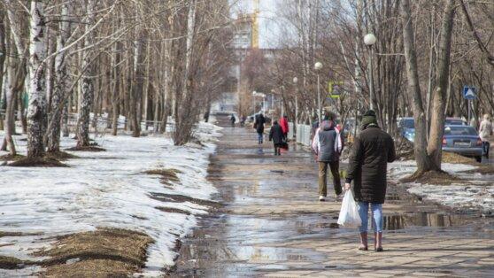 Синоптики рассказали о погоде в Москве 20 января