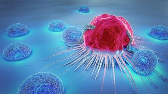 Учёные рассказали о возможности заражения раком и ожирением