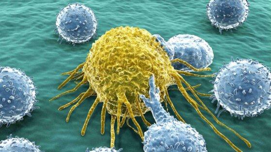 Немецкие врачи сообщили о самом эффективном методе борьбы с раком