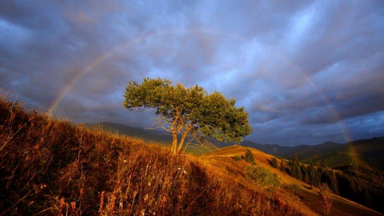 Форум природной фотографии Nature Photo Team