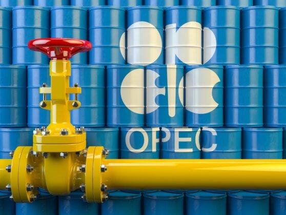 Cокращение добычи нефти ОПЕК+ может превысить 10 млн баррелей в сутки