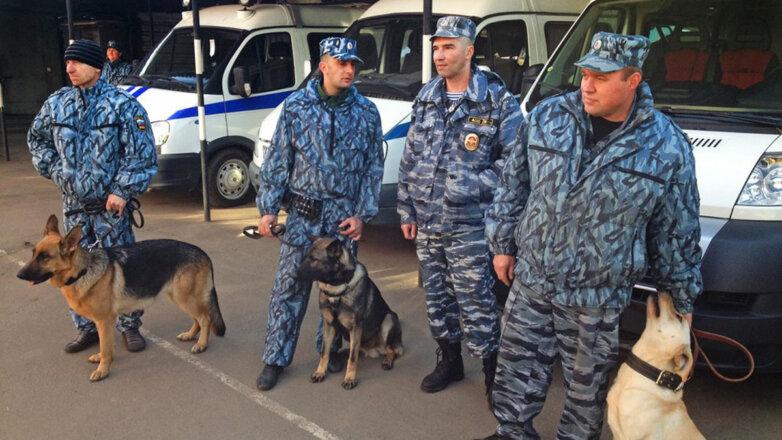 Центр кинологической службы УТ МВД России по ЦФО Собаки Кинологи Полиция