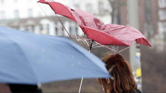 Синоптики предупредили о сильном ливне в Москве