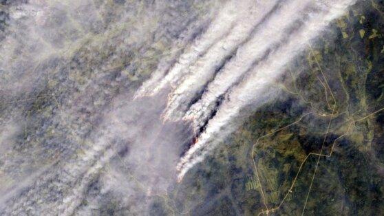 В МЧС признали критической ситуацию с пожарами в Сибири и на Дальнем Востоке