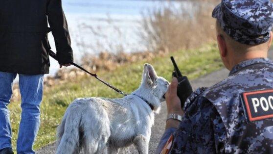 Полиция задержала гулявшего с собакой на Патриарших прудах москвича