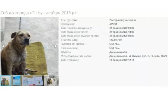У жителя Украины за долги отобрали собаку и выставили на торги