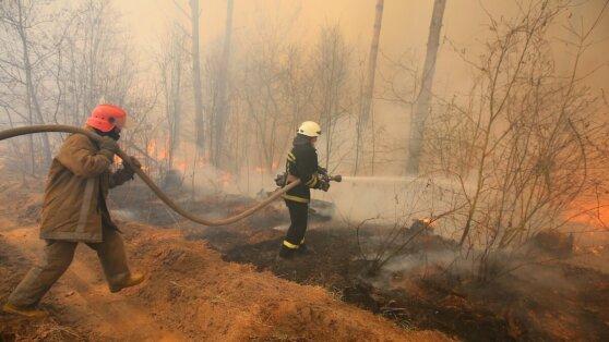 На Камчатке удалось потушить 35 тысяч га лесных пожаров