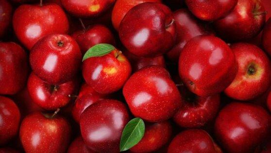 Эксперты назвали лучшие яблоки