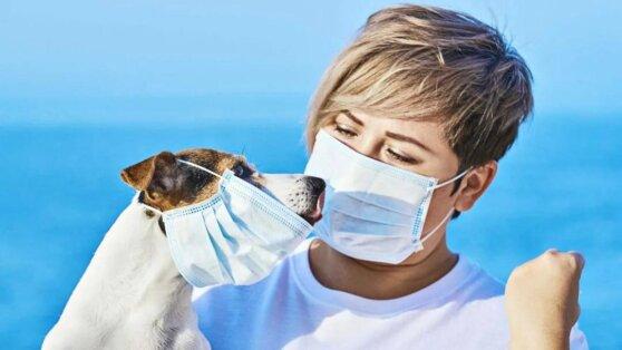 В ВОЗ указали на ключевое условие завершения пандемии