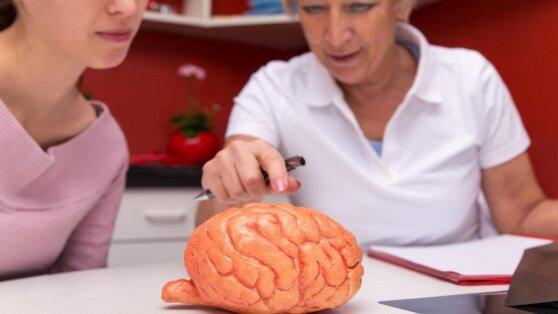 Врач рассказал, кто подвержен риску заболеть рассеянным склерозом