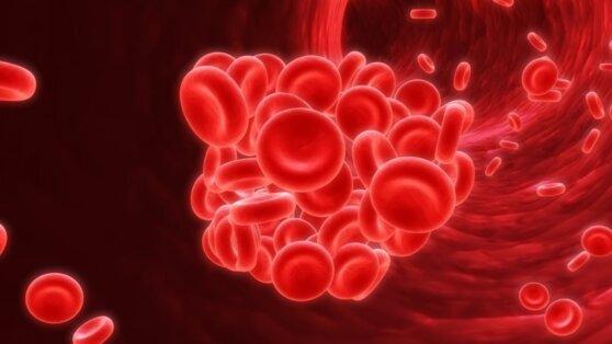 Названы первые признаки тромбоза сосудов